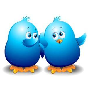 Pulcino Passerotto Blu Chat Blog Blue Birds Talking-Vector
